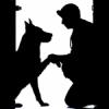 犬の運動管理