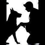 犬と肺がん早期発見の研究