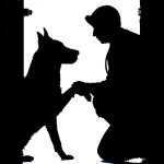 2017人気犬種